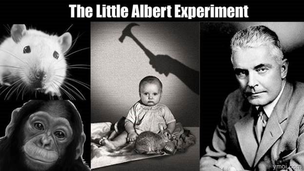 "clip_image004-4 Do you know? The terrible experiment ""Little Ablber""."